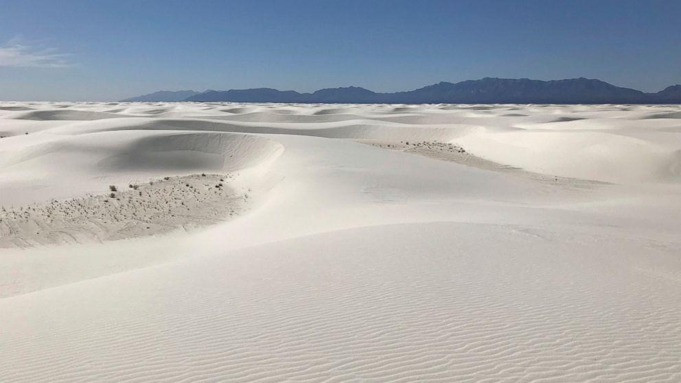 Cowboys for Trump sends national monument sand to Washington