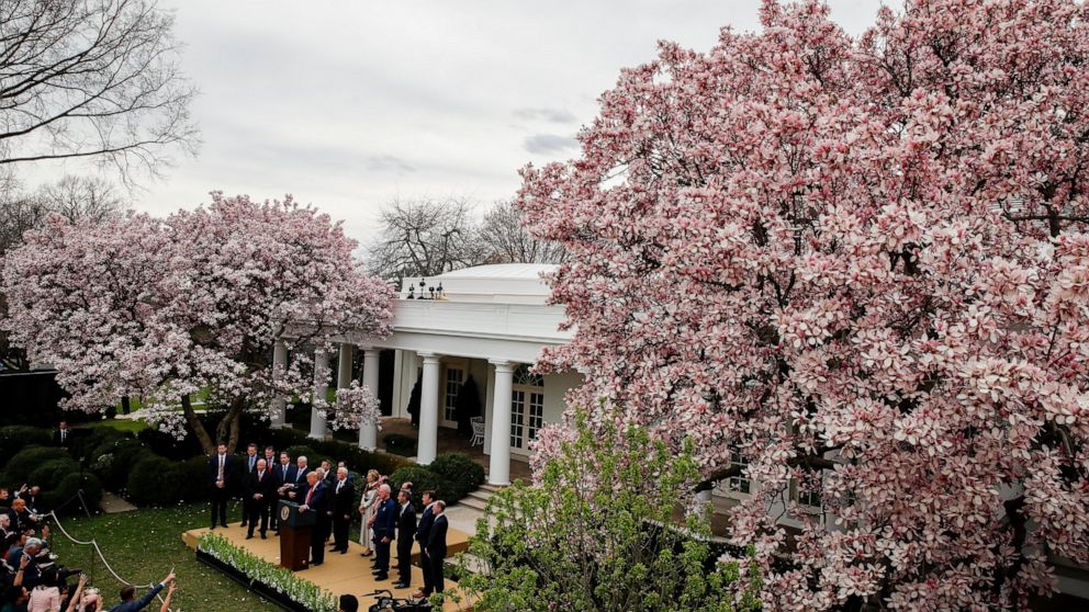White House Rose Garden Is Getting A Face Lift Abc News