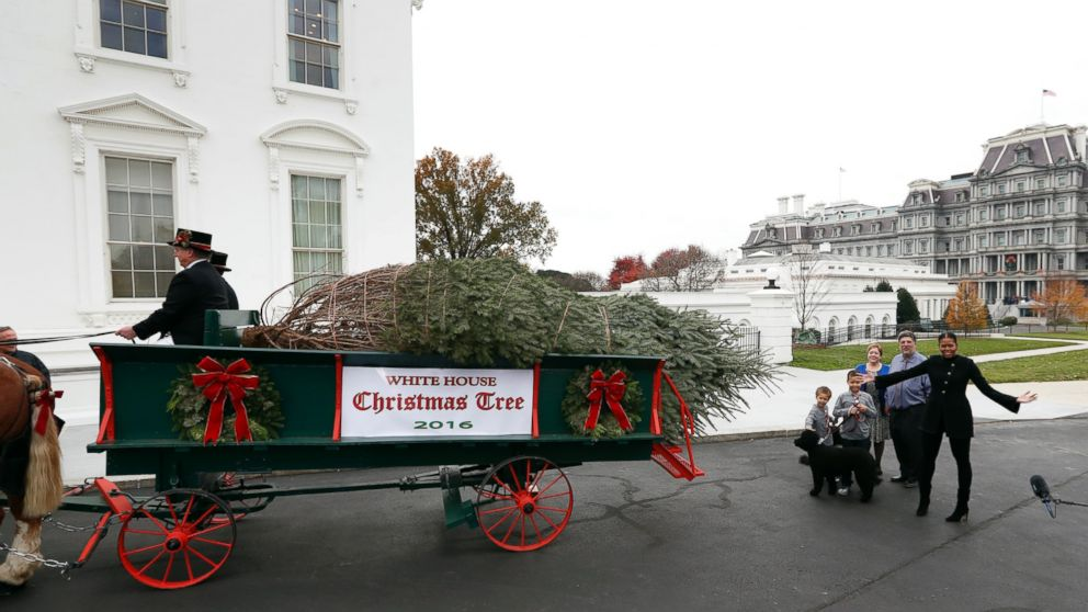 michelle obama welcomes her last white house christmas tree abc news