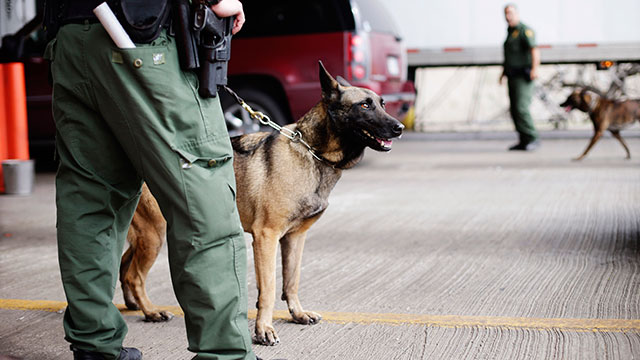PHOTO: U.S. Customs and Border Patrol agents and K-9 security dogs keep watch at a checkpoint station, Feb. 22, 2013, in Falfurrias, Texas.