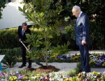 PHOTO: Israeli President Shimon Peres watches at right as President Barack Obama plants a magnolia tree during a planting ceremony at the Presidentís Residence in Jerusalem, Israel, March 20, 2013.
