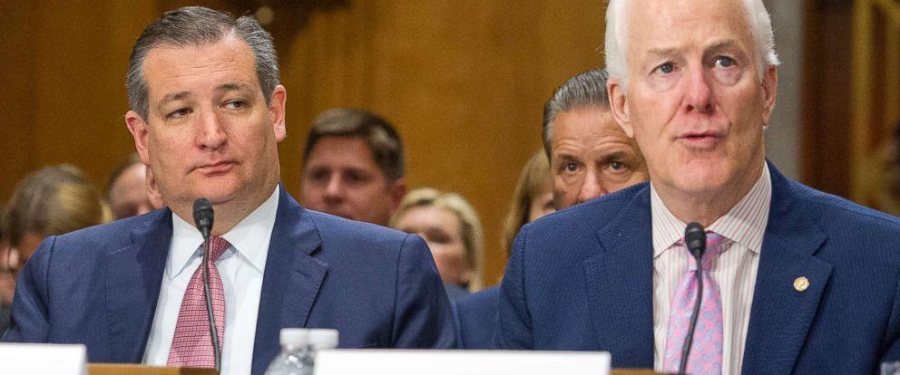PHOTO: Senator Ted Cruz (Republican of Texas) and U.S. Senate Majority Whip John Cornyn (Republican of Texas) on Capitol Hill in Washington, July 20, 2017.