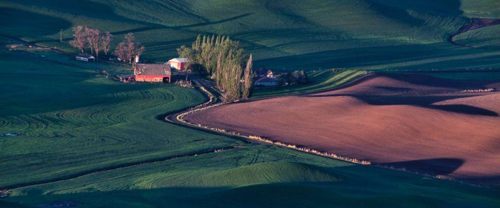 PHOTO: An undated photo of farmland at sunrise in spring, Wash.