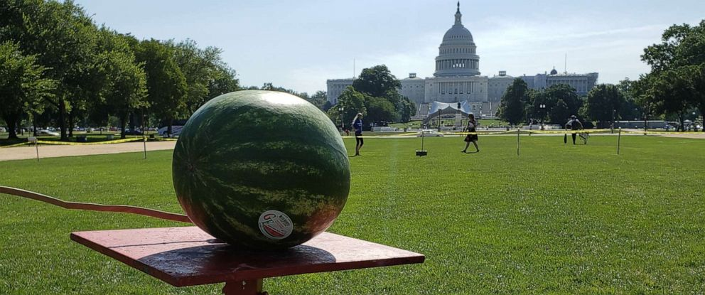 PHOTO: A watermelon is displayed on the National Mall in Washington before it was blown up in a fireworks safety demonstration by the CPSC, June 26, 2019.