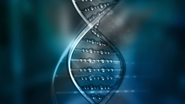 The Supreme Court will revisit the crossroad of privacy and evolving science later this month when it considers whether officials can take the DNA without a warrant of someone who has been arrested but not convicted of a crime. PHOTO: