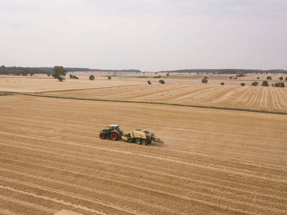 PHOTO: A tractor pulls a square baler press and creates square bales from the straw of a harvested wheat field.