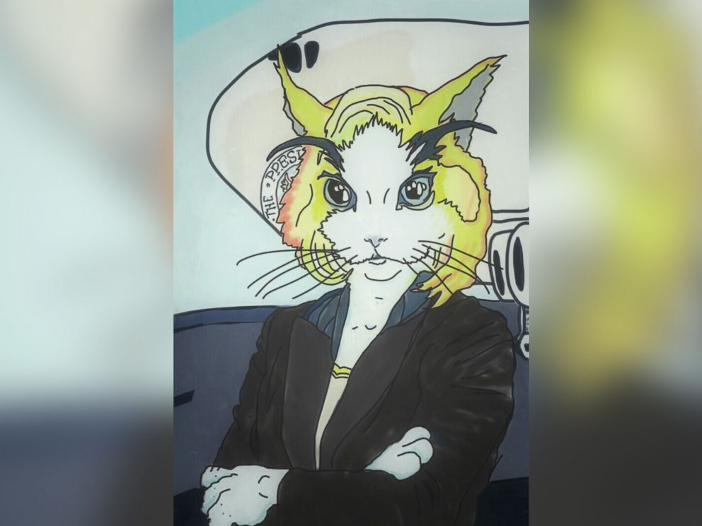 PHOTO: New York Sen. Kirsten Gillibrand is imagined as a cat.