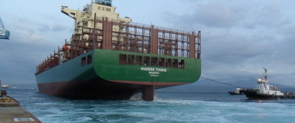 PHOTO: The Maersk Tigris is pictured on German Lashings website.