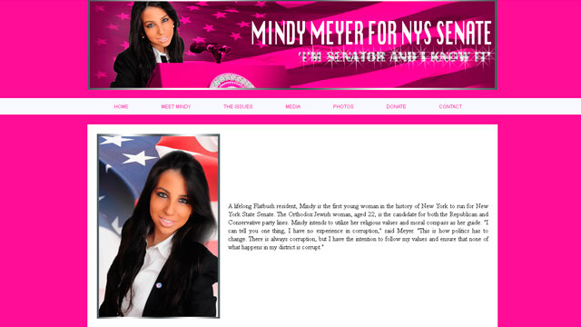 PHOTO: The campaign site of Mindy Meyer, who is running for New York State Senate in the 21st district.