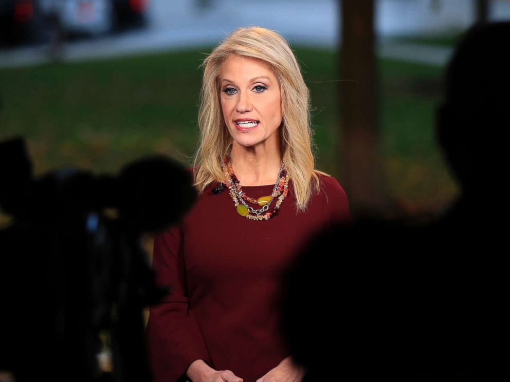 PHOTO: Counselor to President Donald Trump, Kellyanne Conway, is interviewed on television at the White Houses North Lawn in Washington, Nov. 7, 2018.