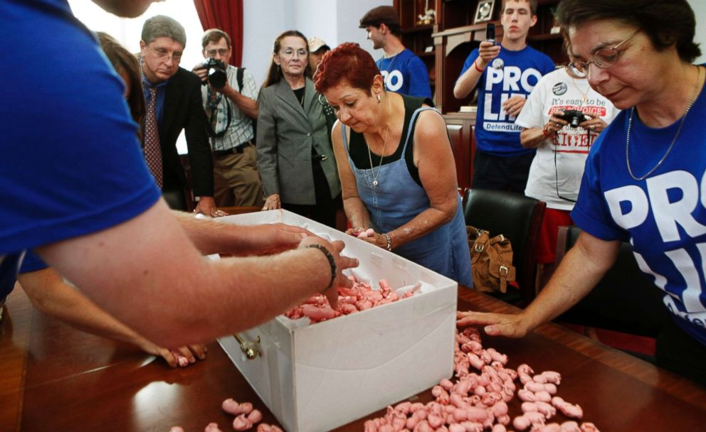 PHOTO: Norma McCorvey, center, helps to gather plastic figures in the shape of babies,during an anti-abortion protest inside House Speaker Nancy Pelosis office on Capitol Hill in Washington, July 28, 2009.