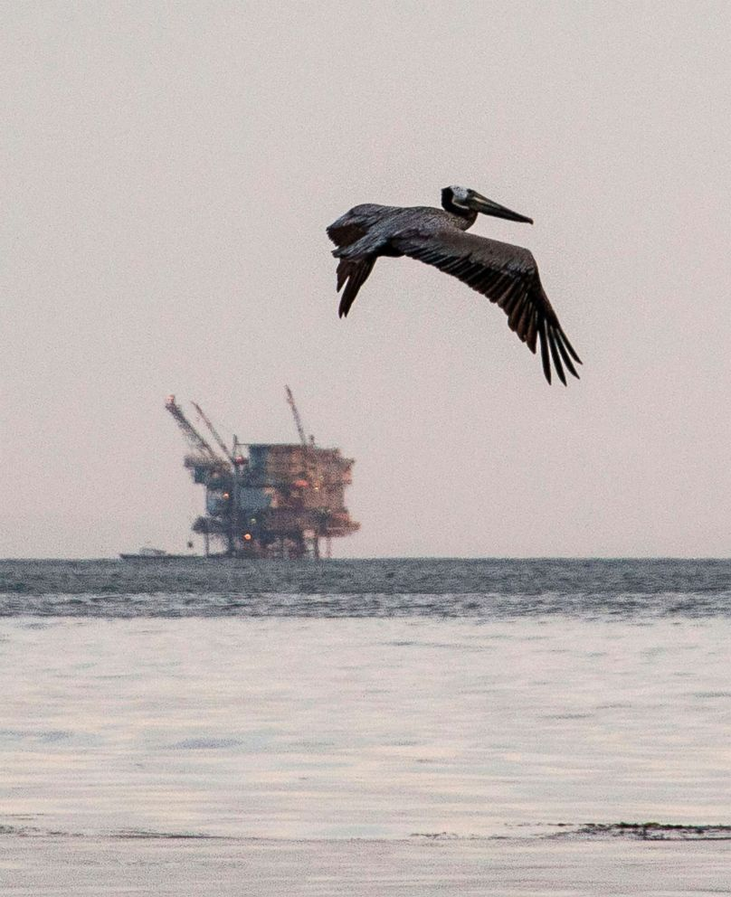 PHOTO: This file photo taken on May 19, 2015 shows an offshore oil drilling at Refugio State Beach in Goleta, California.