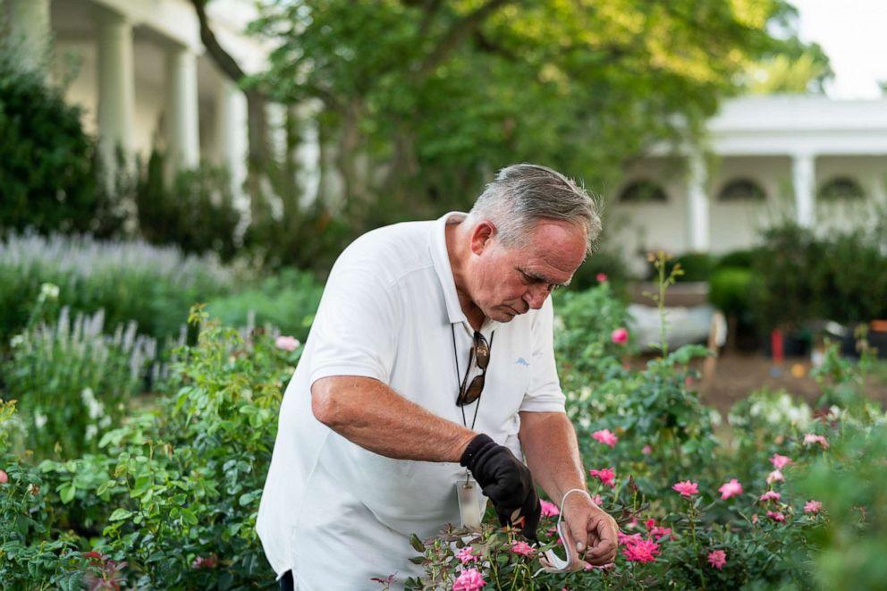 First Lady Melania Trump Unveils White House Rose Garden Restoration Abc News