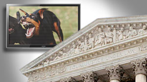 Photo: Dog Fighting Videos: Obscenity or Free Speech? Supreme Court to Hear Arguments Oct. 6