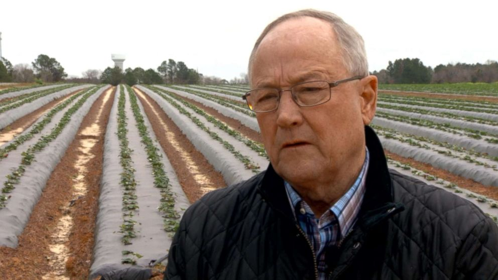 Bill Brim says farmers in Georgia can't access loans and other services during the government shutdown.