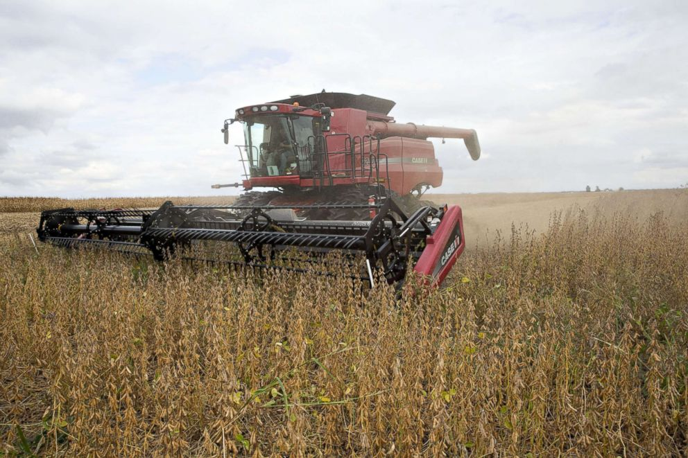 Syngenta Group Co. NK Soybeans are harvested with a Case IH combine harvester near Princeton, Ill., Sept. 29, 2016, this this file photo.