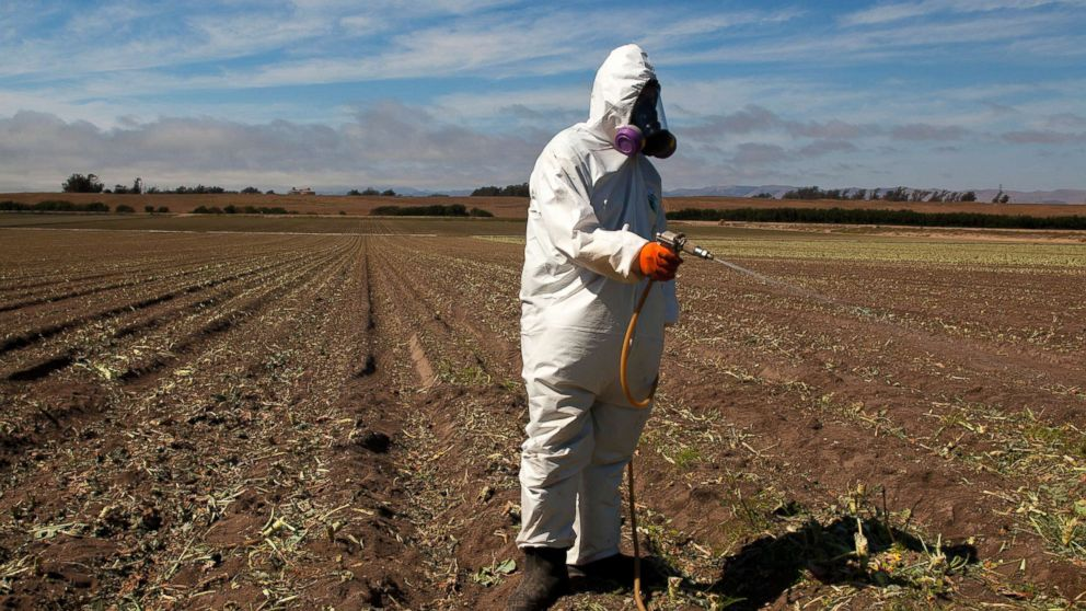 Worker on a farm, wears a Tyvek chemical protective suit as he sprays a field with a herbicide after the broccoli harvest. Herbicides are used to eliminate weeds that are left in the field and need to be eliminated before the next planting, July 25, 2013.