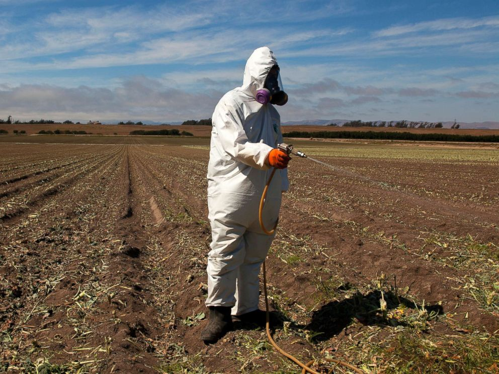 PHOTO: A worker on a farm wears a Tyvek chemical protective suit as he sprays a field with a herbicide after the broccoli harvest, July 25, 2013.