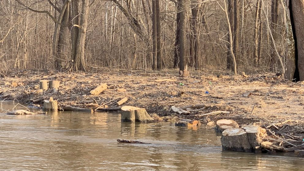 Photos provided by Potomac Riverkeeper Network show trees cleared from a riverbank near Trump National Golf Course in Virginia.