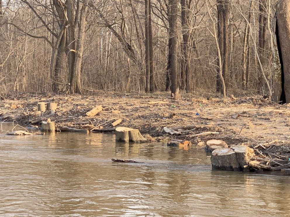 PHOTO: Photos provided by Potomac Riverkeeper Network show trees cleared from a riverbank near Trump National Golf Course in Virginia.