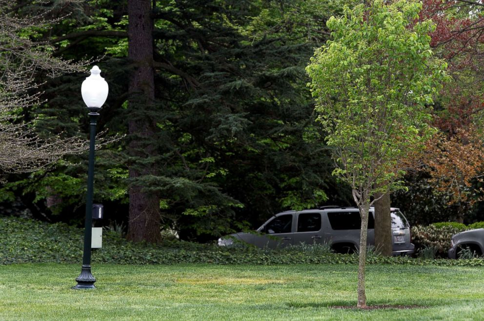 PHOTO: A yellow spot is seen where the tree planted by French President Emmanuel Macron and President Donald Trump on April 23 stood on the South Lawn of the White House in Washington, D.C., April 28, 2018.