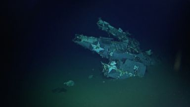 PHOTO: An F4F-4 Wildcat fighter aircraft with its wings folded sits on the ocean floor.