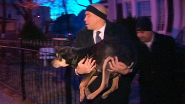 Cory Booker To The Rescue Mayor Helps Chilled Dog Video