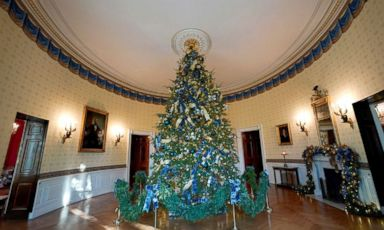 photo the official white house christmas tree adorns the blue room of the white house - Obama Christmas Decorations