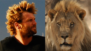 Living with Lions