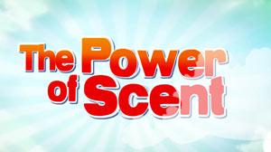 powerofscent imgs