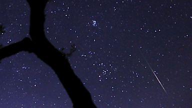 PHOTO: Perseids Meteor Shower