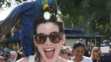 PHOTO: Anne Hathaway is pictured on March 21, 2014 in Miami, Fla.