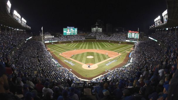 Chicago Cubs Fans Vote for World Series and Tacos in Election Cycle