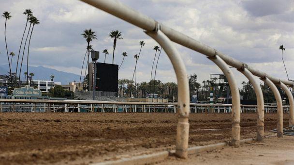 Horse injured in race at Santa Anita; 34th to die at track