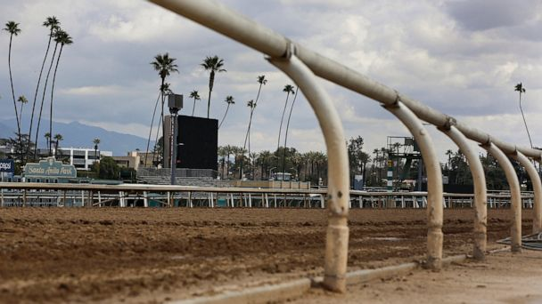 Santa Anita checking if rules followed before horse's death