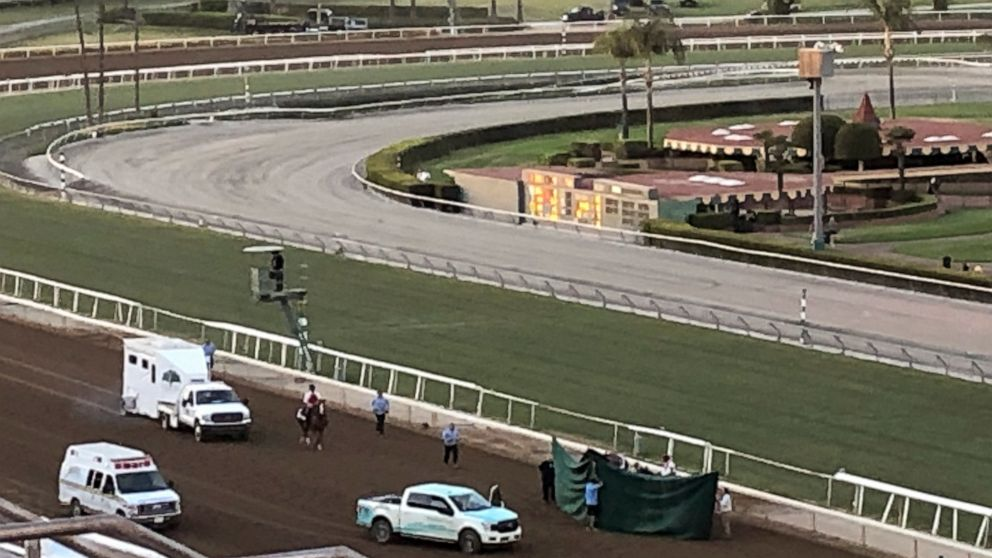 15-1 long shot fatally injured in Breeders' Cup Classic thumbnail