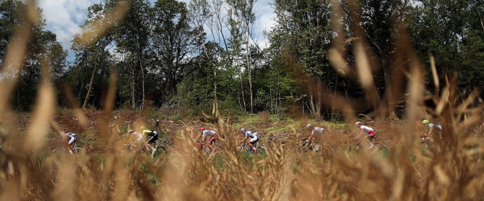 Riders pass by a corn field during the seventh stage of the Tour de France cycling race over 230 kilometers (142,9 miles) with start in Belfort and finish in Chalon sur Saone, France, Friday, July 12, 2019. (AP Photo/Thibault Camus)