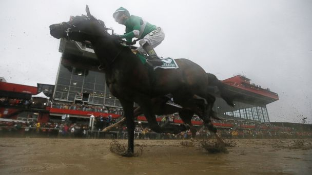 Exaggerator Wins the Preakness; Nyquist Finishes Third