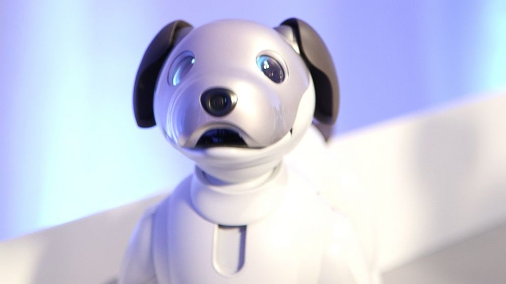 Good Morning America Robot : Playing with robot puppies at ces video abc news
