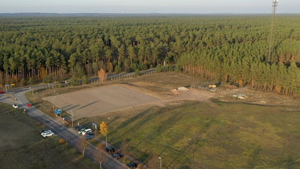 Tesla asked by court to stop cutting down trees at site of new factory