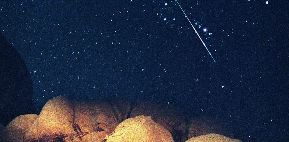 PHOTO: A bright Perseid Meteor