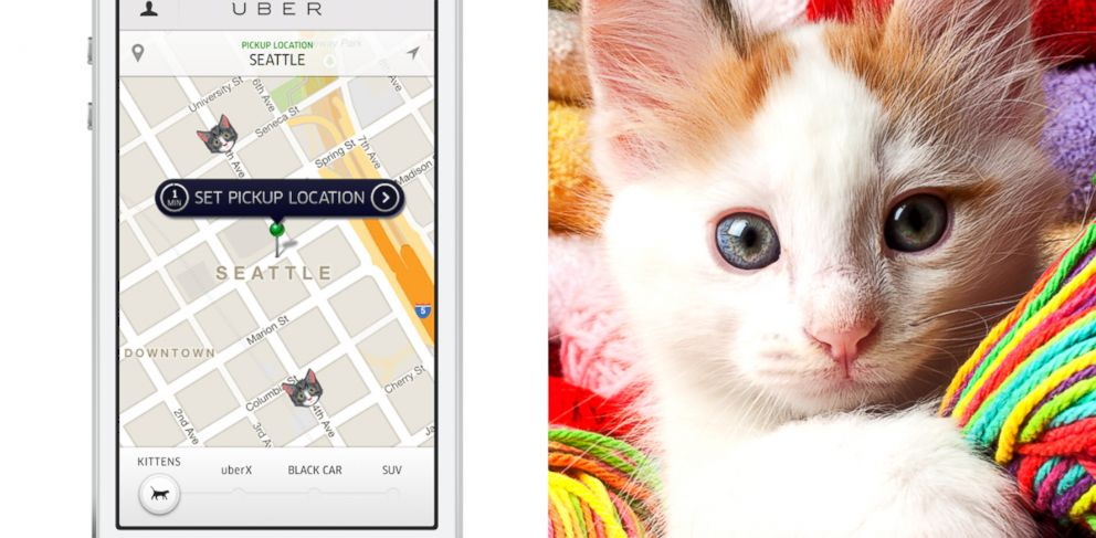 PHOTO: To celebrate National Cat Day, Uber and Cheezburger are bringing people kittens.