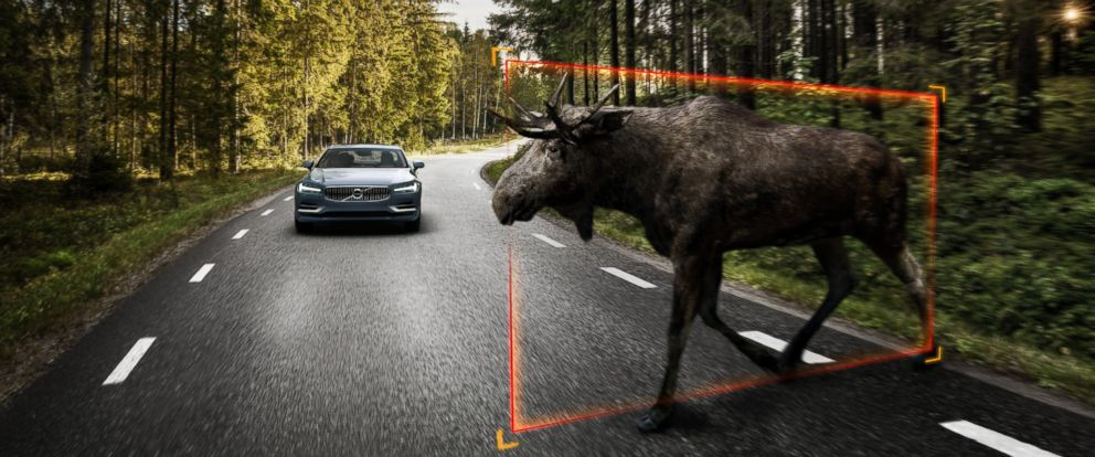PHOTO: Exterior large animal detection is one of the new features of the Volvo S90.