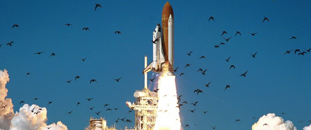 PHOTO: NASAs Space Shuttle Challenger lifts off from Kennedy Space Center in this NASA handout photo dated Jan. 28, 1986.