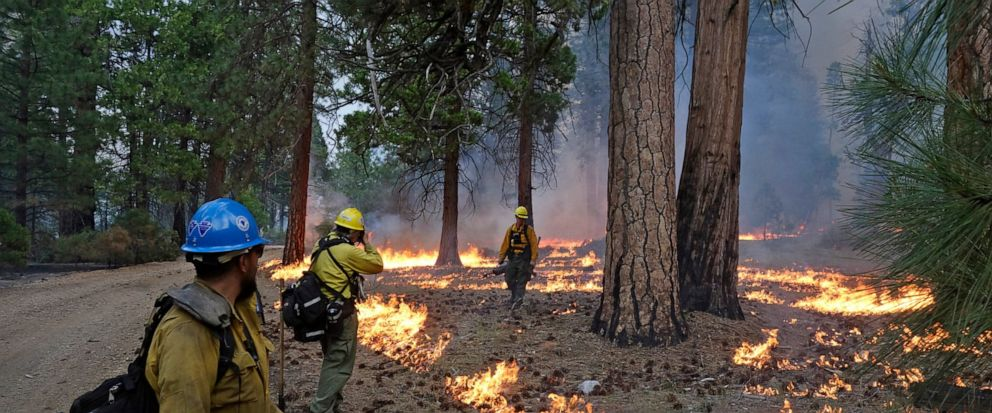 In this June 11, 2019 photo, firefighter Andrew Pettit, right, walks among the flames in Cedar Grove as fire ecologist Tony Caprio, center, take a photo and firefighter Julio Campos looks on during a prescribed fire in Kings Canyon National Park, Cal