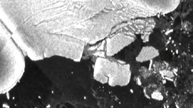 VIDEO: Earthquake generated sea swells that bombarded Antarctic ice shelf.