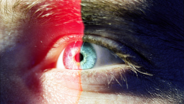 PHOTO: Retinal scans will replace passwords.