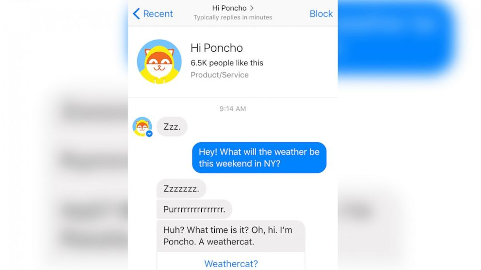 """A screen grab made from the Facebook Messenger app on April 14, 2016 shows a conversation with the """"Hi Poncho"""" chat bot."""