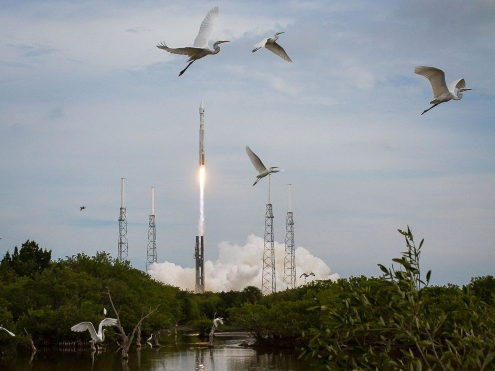 PHOTO: The United Launch Alliance Atlas V rocket with NASA's Mars Atmosphere and Volatile EvolutioN (MAVEN) spacecraft launches from the Cape Canaveral Air Force Station Space Launch Complex 41 in Cape Canaveral, Florida on Nov. 18, 2013.
