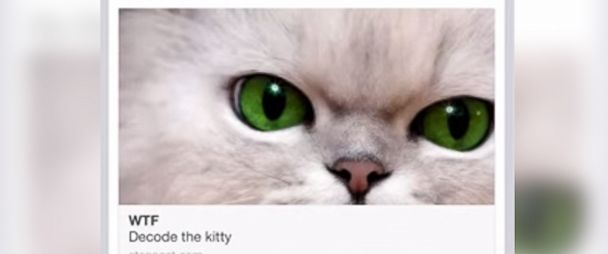 Wickr App Hides Secret Messages Behind Cat Photos - ABC News